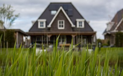 4 Ways To Stop Foreclosure in Florida